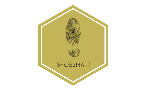 Sepatu Teknologi Indonesia PT